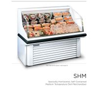 SHM.pdf-0